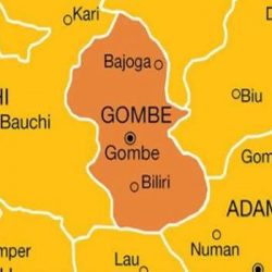 Protesters Block Gombe-Yola Highway Over Governor's Delay In Announcing Preferred Kingship Candidate