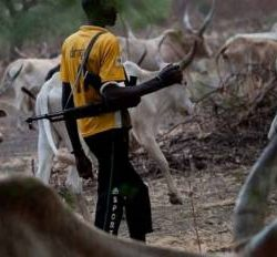 Residents Of Ogun Community Rush To Withdraw Children From School As Suspected Fulani Herdsmen Kill Couple
